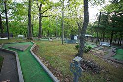 Fun backyard ideas - mini golf anyone?