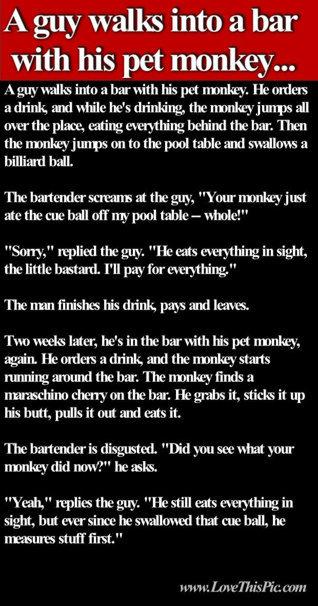 A Guy Walks Into A Bar With His Pet Monkey Joke funny jokes lol funny quotes joke humor dirty jokes adult jokes