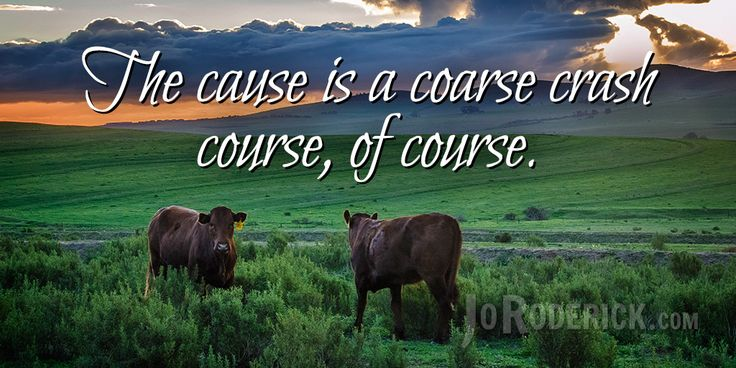 Quote 138: The cause is a coarse crash course, of course.  #Quote #Humour #AmWriting