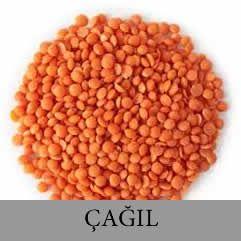 CAGIL