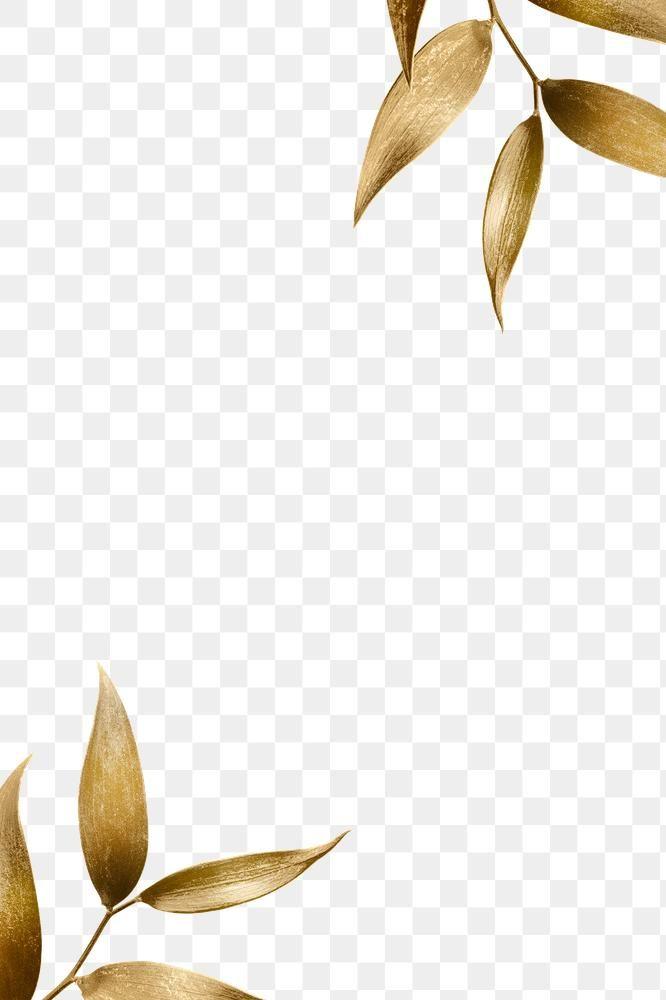 Golden Olive Leaves Frame Design Element Free Image By Rawpixel Com Adj Flower Png Images Watercolor Flower Wreath Flower Background Wallpaper