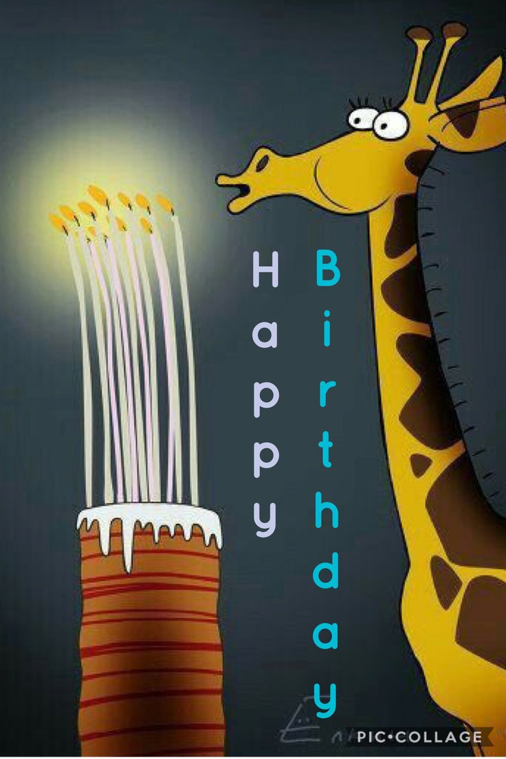 Giraffe Happy Birthday!!!