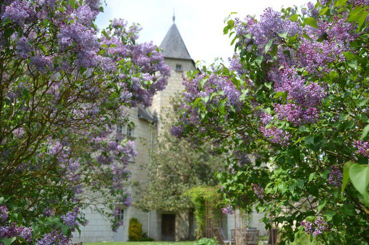 Splendeur du printemps au jardin suspendu sur l'ancienne motte féodale.