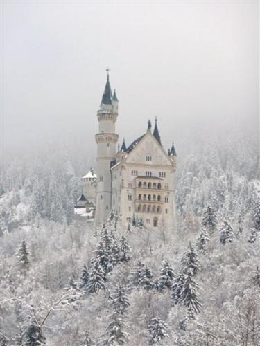 Marne Kosobucki's photo of Germany's Neuschwanstein Castle.: Castles Disney, Schloss Neuschwanstein, Beautiful, Winter Wonderland, Places I D, Neuschwanstein Castles, Amazing Places, Awesome Places, Fairies Tales