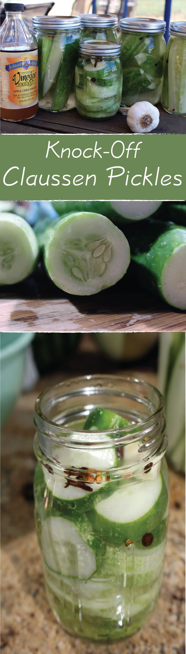 Are you a pickle fan? Well….I am too! Every summer I plant too many pickling cucumbers and quickly become overrun by them.  This is my first attempt at these super simple knock-off Claussen-style dill pickles. And when I say super-simple…I mean it!!!