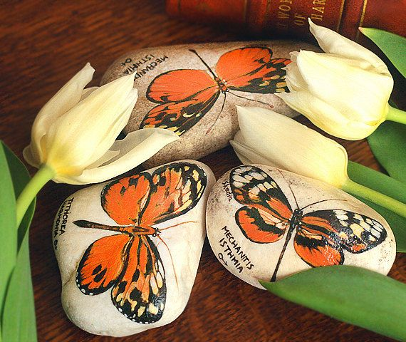 Set of three stones with a hand-painted orange by SkadiaArt
