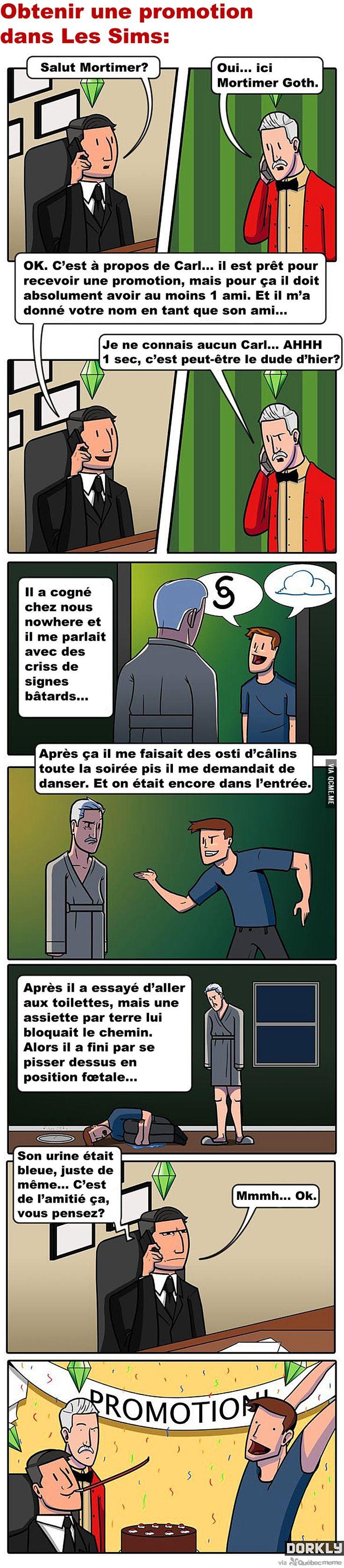 Logique des Sims – Québec Meme +