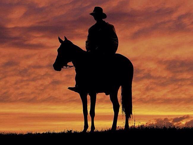 Australian stockman  at sunset .