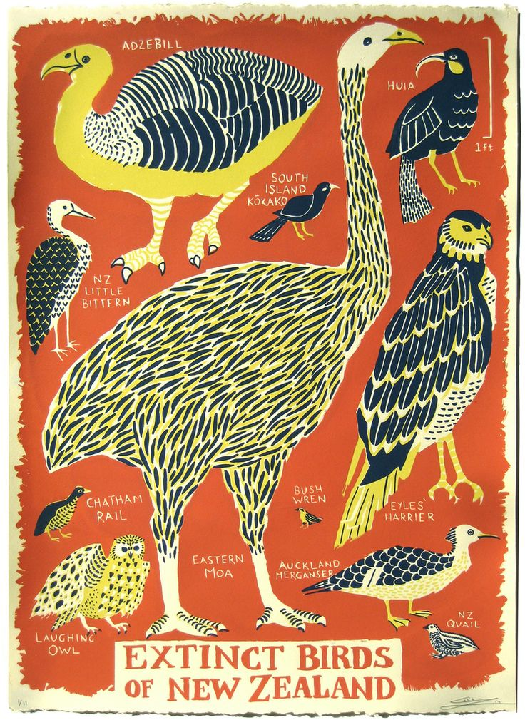 Extinct Birds of New Zealand, Caleb Luke Lin  3 Layer Screenprint on 22x15 Stongehenge