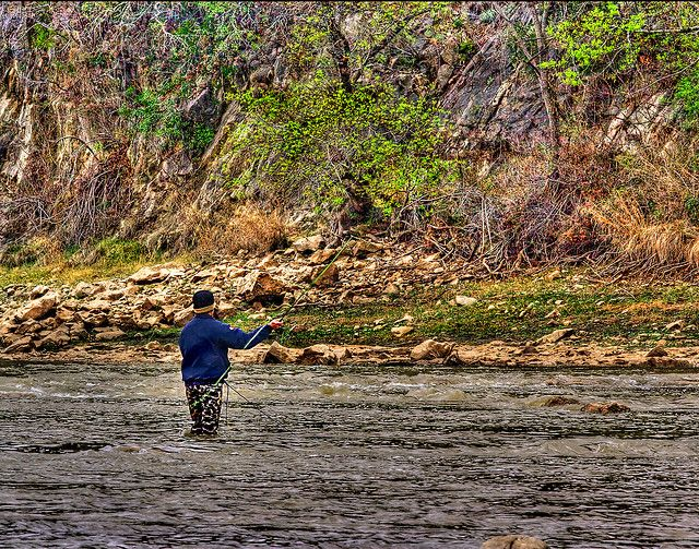 Fly fishing colorado river texas go inspect this out http for Trout fishing in texas