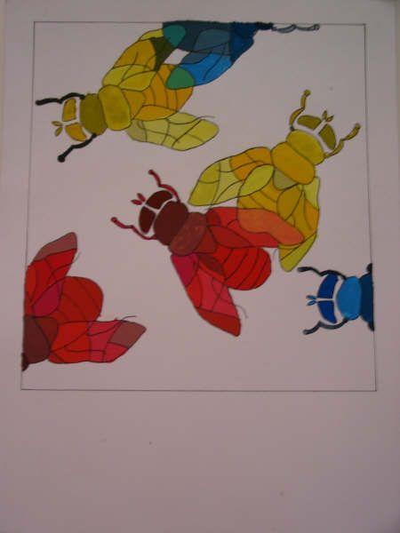 insecten kleurenmengen Reinhilde Debruyne