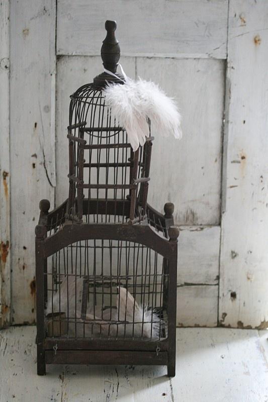Hele oude vogelkooi.