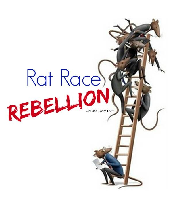 From a quality of life perspective, I would not wish corporate America on my worst enemy, much less my own children... Why I am teaching Rat Race Rebellion. | Live and Learn Farm