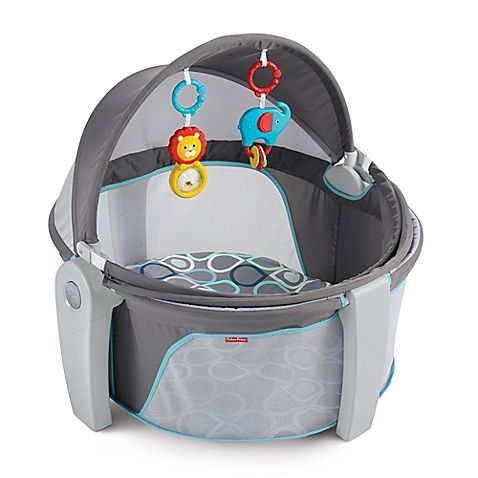 Fisher-Price'sOn-the-Go Baby Dome.