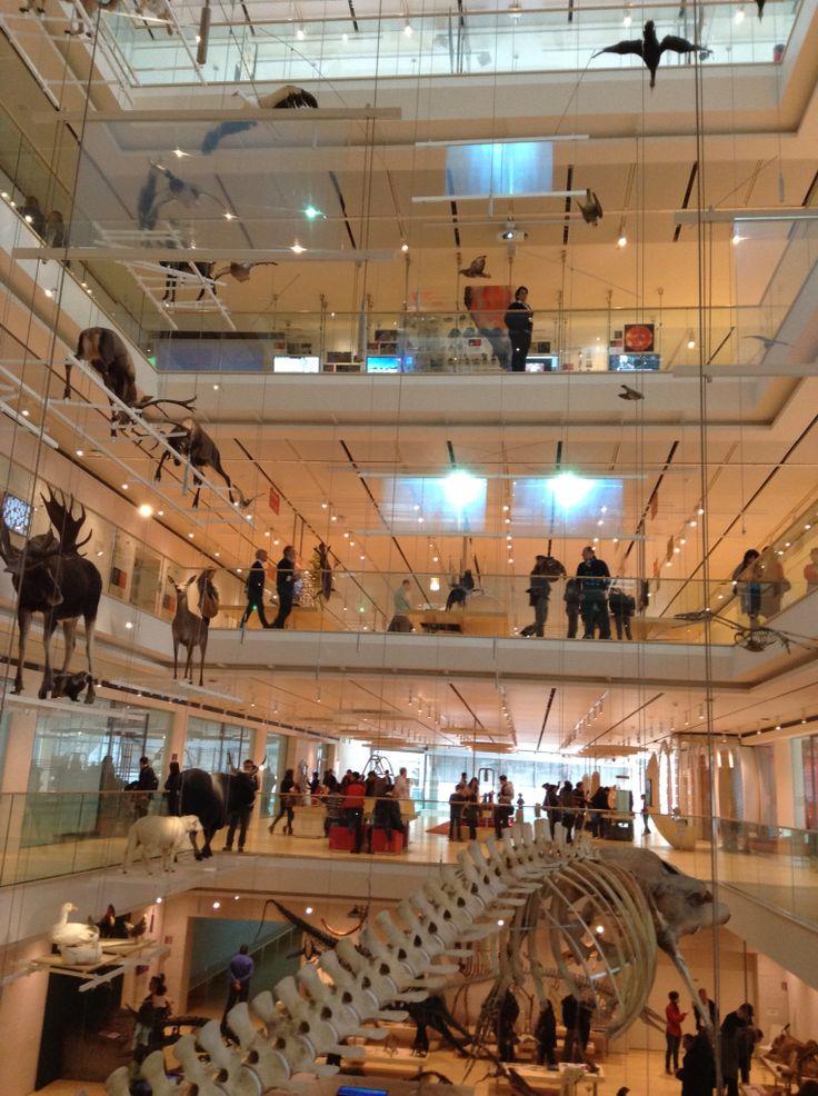 Renzo Piano MUSE - Trento