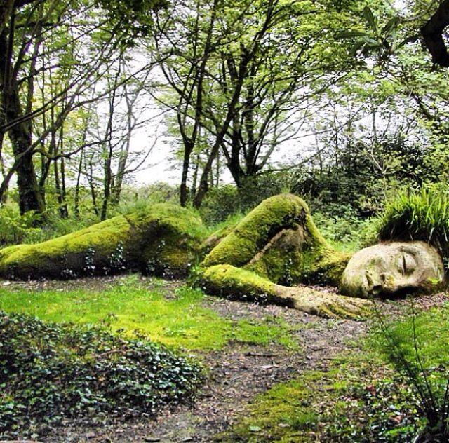 Garden Art Plus: Sleeping Beauty