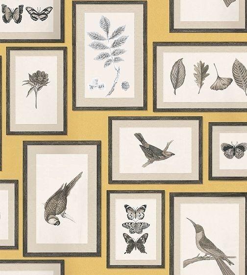 les 56 meilleures images du tableau ai papier peint insecte sur pinterest papier peint. Black Bedroom Furniture Sets. Home Design Ideas