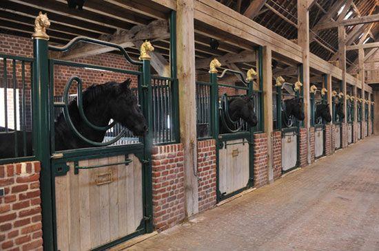 Rustic horse stabling barn, Belgium