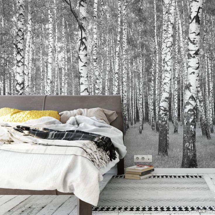 Die besten 25 fototapete birkenwald ideen auf pinterest birkenwald fototapete natur und - Fototapete birkenwald schwarz weiay ...