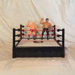 World Championship Wrestling presented SuperBrawl live on Pay-Per-View on May 19,1991. The Event was held at the Bayfront Center in St. Petersburg,...