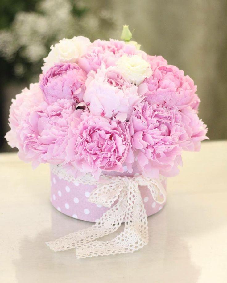 Prekvapte & potešte vašich vlízkych s našou donáškovou službou 0907 883 245  #kvetysilvia #kvetinarstvo #kvety #svadba #love #instagood #cute #follow #donaskovasluzba #beautiful #tagsforlikes #happy #like4like #nature #style #nofilter #pretty #flowers #design #awesome #wedding #home #handmade #flower #summer #bride #weddingday #floral #naturelovers #picoftheday