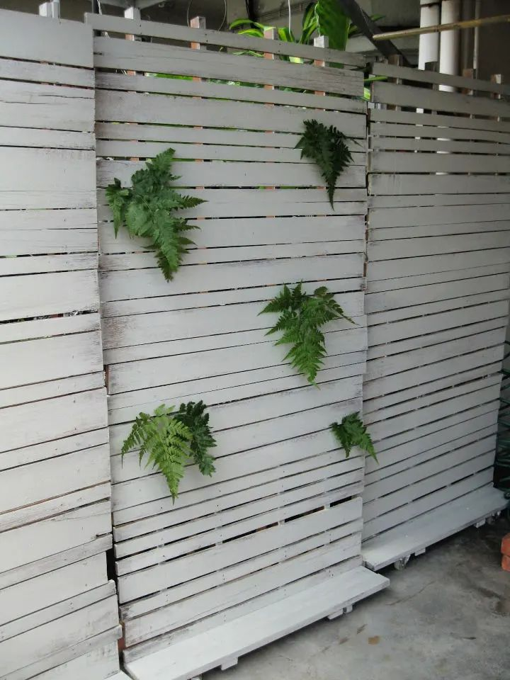 do it yourself outdoor privacy screen