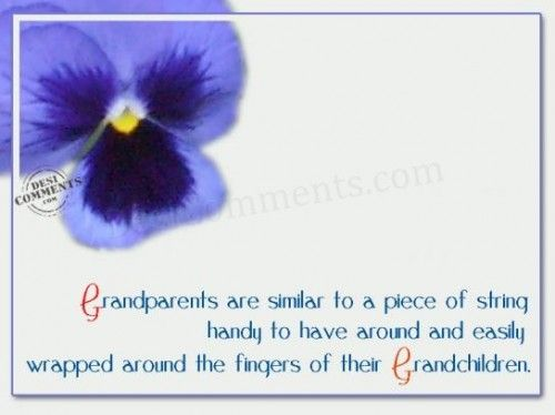 This reminds me of my own gram... I think mostly it is the pansy...She loved them and grew them well...