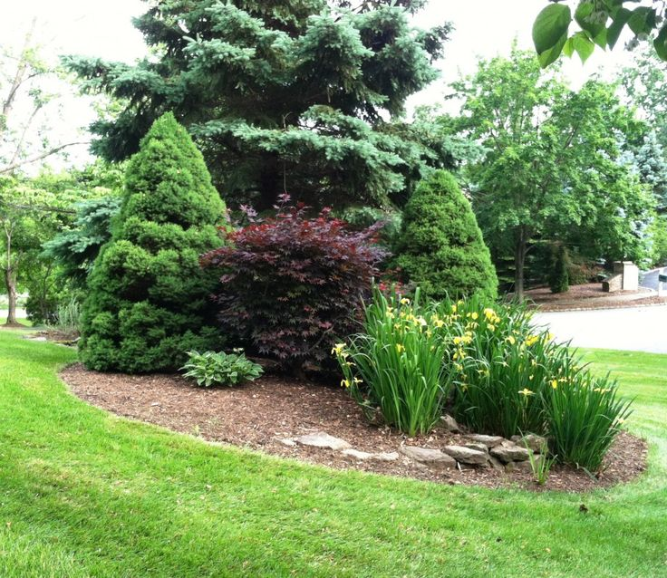 232 best berms images on pinterest landscaping for Curb appeal garden designs