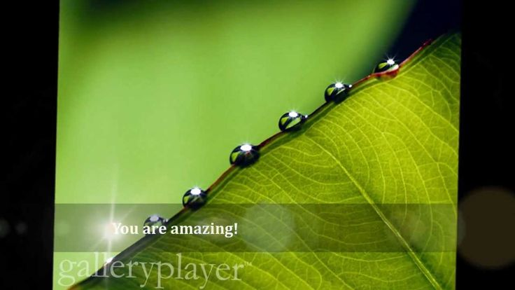 You Are Amazing! Happiness creates happiness - breathe, relax and enjoy.  With Blessings Kam <3  www.bluebutterflyspirit.com