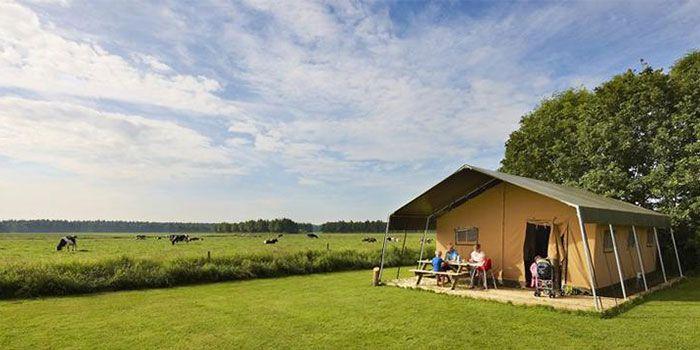Voor grote gezinnen met 6 personen die zin hebben in ruimte, actie en het boerenleven, en een comfortabel verblijf willen, is de luxe safaritent perfect.