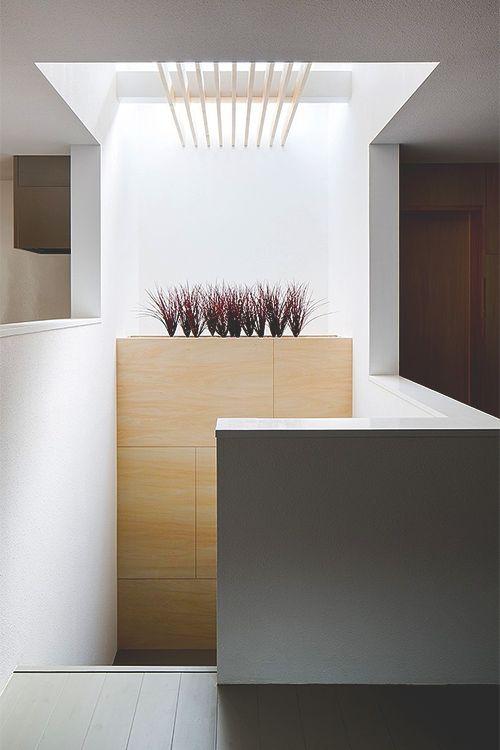 Centraal trapgat opnemen in het donkerste gedeelte van het huis, met daklicht