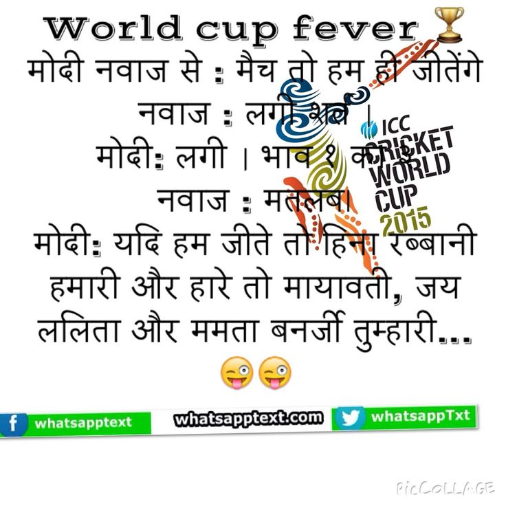 Cricket world cup fever on India And Pakistan politics.