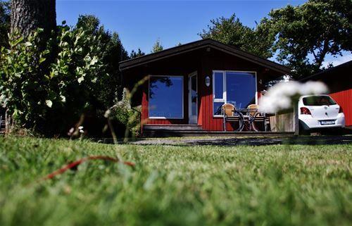 Alle hytter har utsikt over sjøen og har god uteplass.