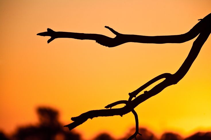 A red hot sunset in Mildura, Australia.
