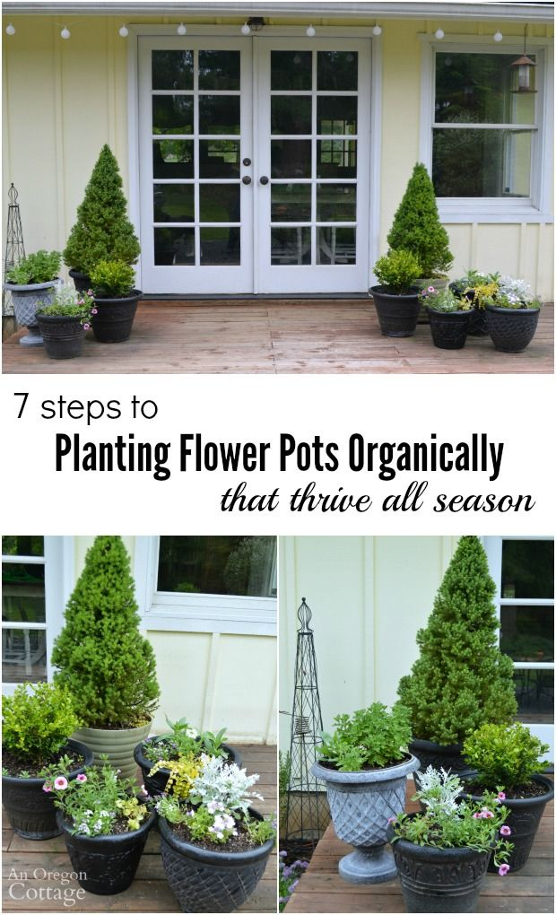 Use these 7 Tips for Planting Flower Pots Organically and your flower containers will thrive and look beautiful ALL season! @gilmourgarden  #ad #GilmourGardening
