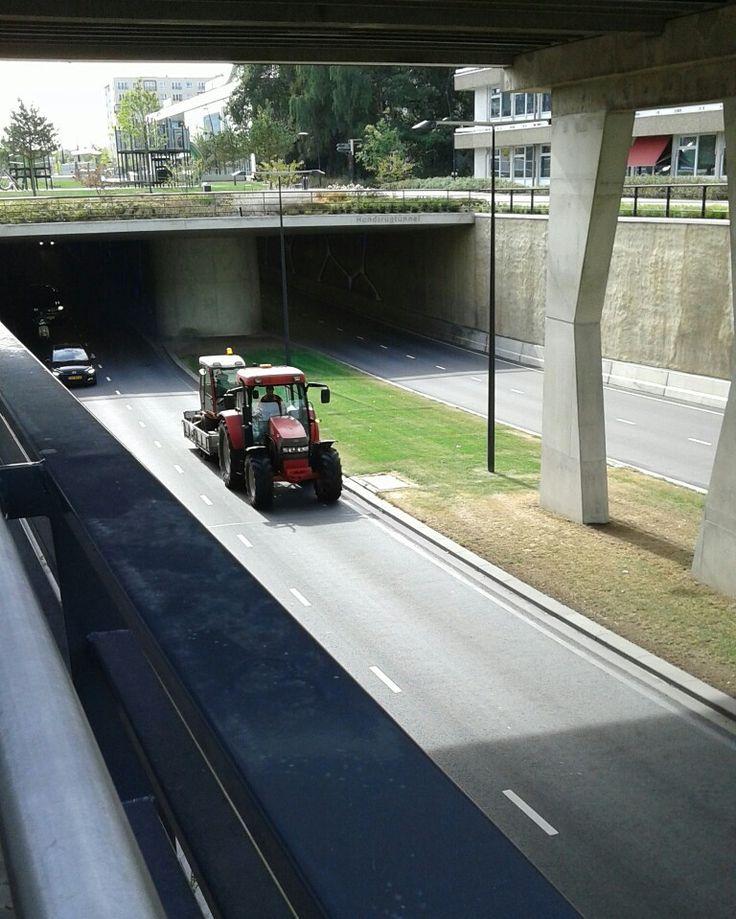 Tracteur / Emmen