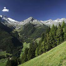 Unser Hotel Alpin Royal ist ein idealer Ausgangspunkt für Mountainbiker.