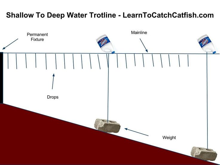 Trotlines Google Search Fishing Pinterest Catfish Fishing
