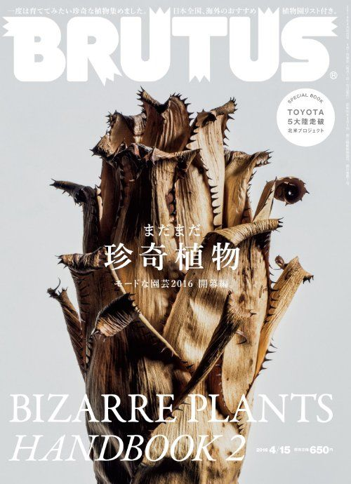 magazinewall:   Brutus (Tokyo, Japon / Japan) - Visualgraphc