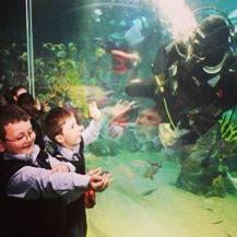 School visit @Turkuazoo Akvaryum aquarium