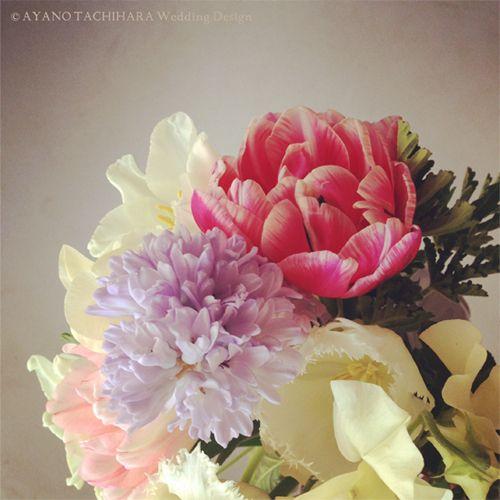 spring_flower