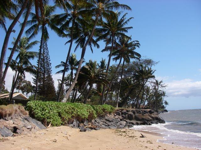 Hunter Vacation Rentals Big Island Hawaii