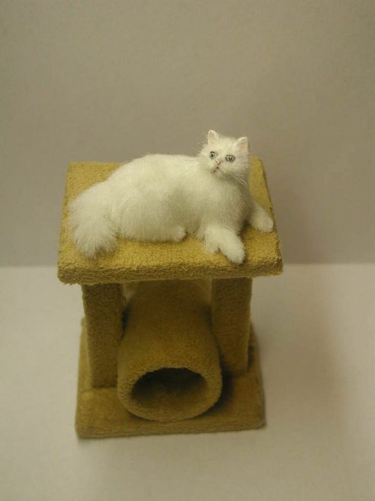 Gorgeous Persian Cat OOAK By IGMA Artisan