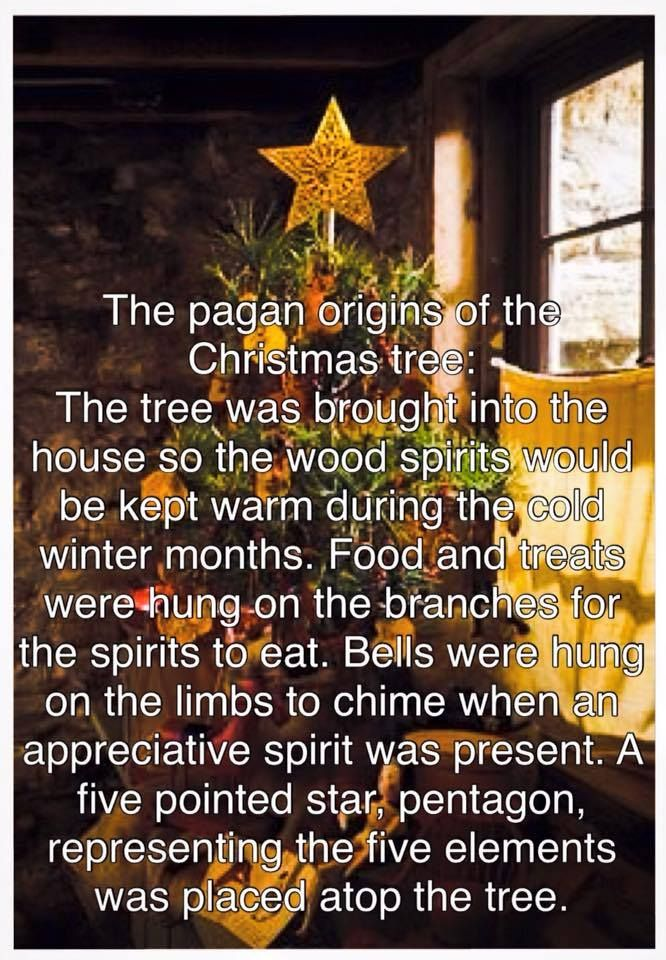Christmas Tree Pagan Origin