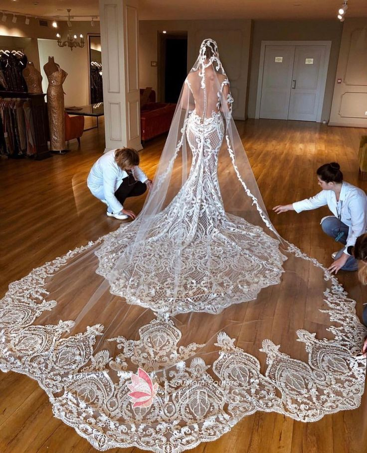 Seethrough Lace Long Train and Veil Wedding Dress in 2020