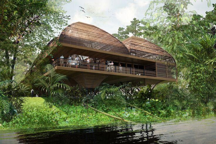 Primer Lugar en concurso nacional de diseño de Universidad Regional de la Región Amazónica IKIAM / Ecuador