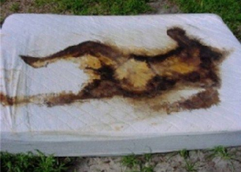 Human decomposition stain left on a mattress.