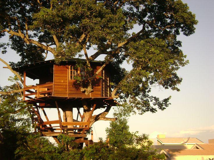 Escritório da Casa na Árvore em Londrina/PR - Brazil. 32 m2 a 8 m de altura sobre uma paineira-rosa. Our office in Londrina/PR - Brazil.  32 m2 over a pink cotton tree at 8,5 meters of height. Buil by Casa na Árvore Ltda - 2008.