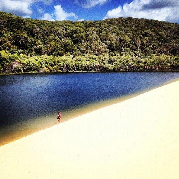 Fraser Island #Queensland #Australia    katrineelkjaer instagram