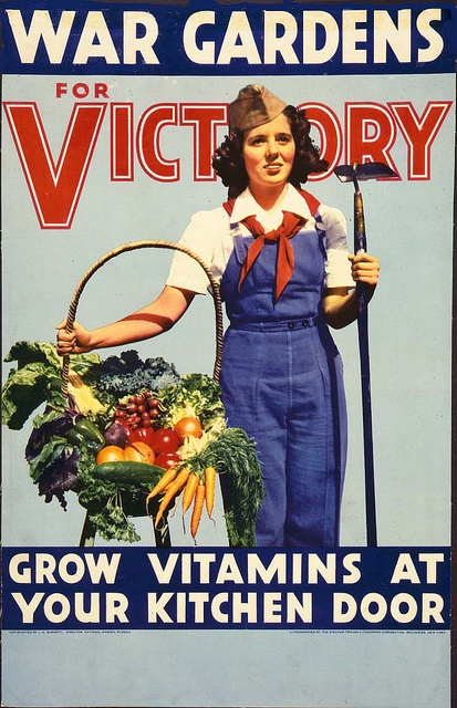 ☤ MD ☞✪  Grow vitamins at your kitchen door. #WW2 #vintage #war #garden #1940s #woman #food